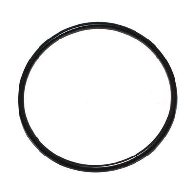 """Уплотнительное кольцо для крышки фильтрующего насоса Intex 10325 купить, отзывы, фото, доставка - Клуб совместных покупок СП """"Фреш""""   Совместные покуп"""
